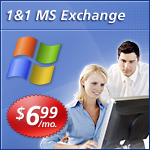 Microsoft Hosted Email Exchange Service Picture