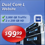 Dual Core L Website Picture